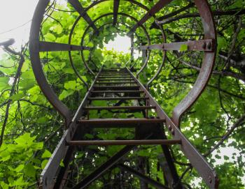 Brown Metal Steep Ladder