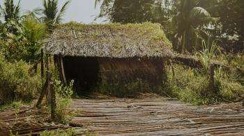 Brown Nipa Hut Photo