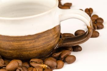 Brown Nuts and Brown Ceramic Tea Cup