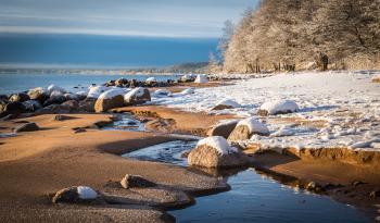 Brown Stone on Ocean