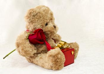 Brown teddy bear with a rose and a gift