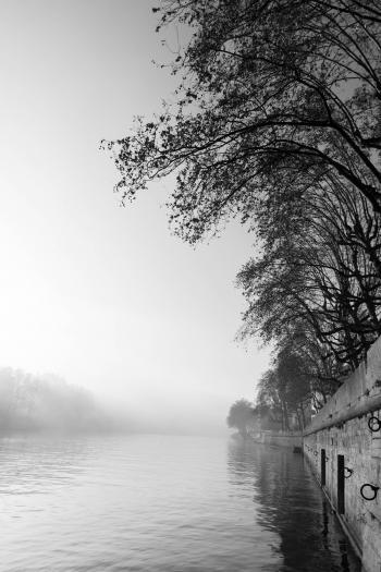 Brume sur la Saone a Lyon.jpg