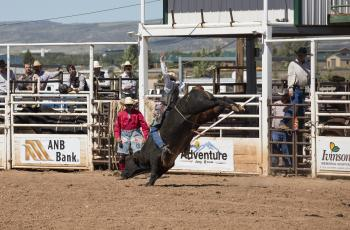 Bull Ride