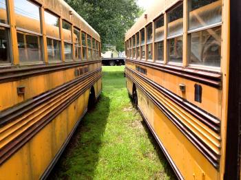 Bus Bus Parallelism