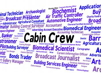 Cabin Crew Indicates Airline Steward And Attendant