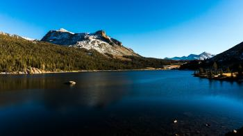Calm Water Near Green Tress Under Snow-capped Mountain and Blue Sky