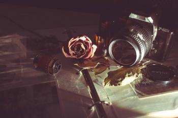 Camera, film and rose