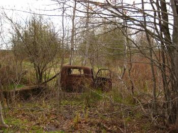 Car wreck in the woods