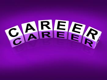 Career Blocks Refer to Professional and Work Life