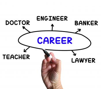 Career Diagram Means Profession And Field Of Work