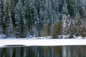 Carmen-Smith Hydroelectric Project, Oregon