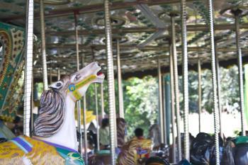Carousel Theme Park