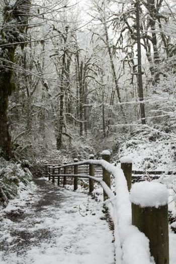 Cascadia State Park in snow, Oregon