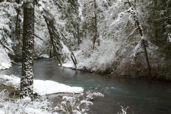 Cascadia State Park, Oregon