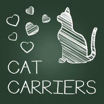Cat Carriers Indicates Pedigree Container And Kitty