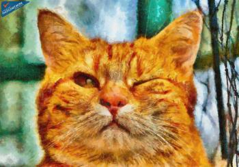 Cat - ID: 16218-130639-8656
