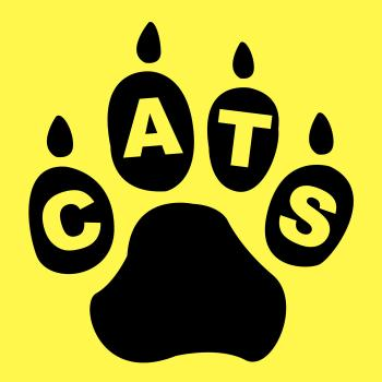 Cats Paw Represents Pet Care And Feline