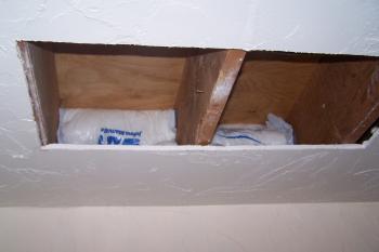 Ceiling Cutout 4