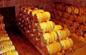 Cellar - Wooden Barrels - Douro and Port Wine Barrels