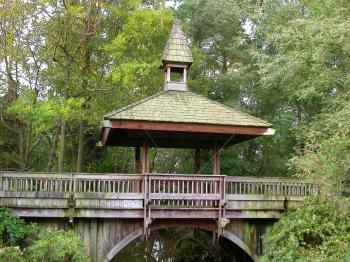 Chineese wooden bridge