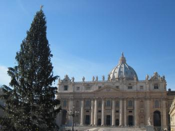 Christmas tree at the St. Peter's s