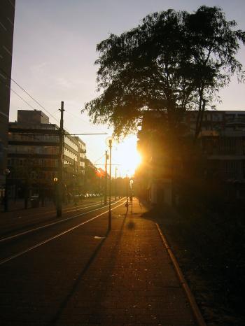 City dusk