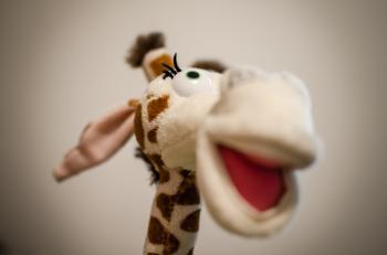 Cool giraffe toy