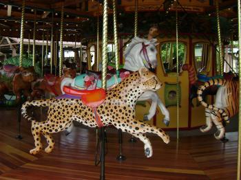 Cougar Carousel