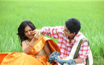 Couple sitting in the paddy field