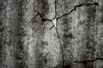 Cracked Plastic Texture