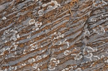 Cracked Stone Striations - HDR Texture