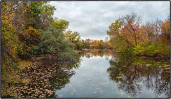 Credit River, Erin Ontario