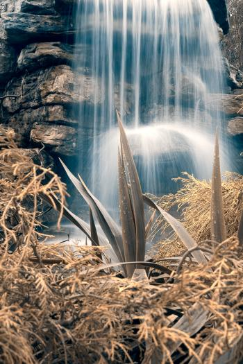 Cross-Processed Waterfall Foliage - HDR