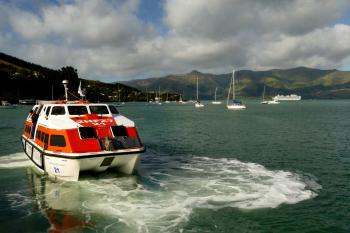 Cruise ship tender. Diamond Princess. Akaroa. NZ