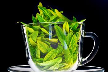 Cup with leaves