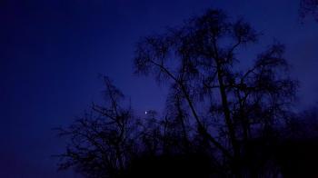 Dark Blue Night