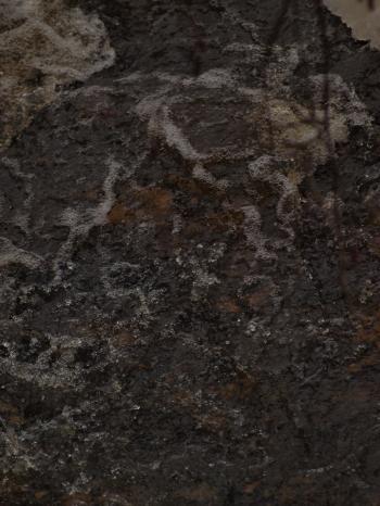 Dark Water Texture