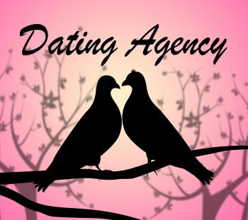 Dating Agency Means Business Net And Sweetheart