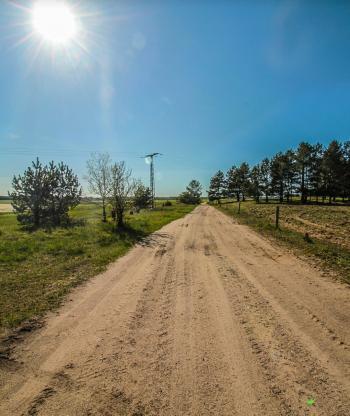 Dirt Road in the Sun