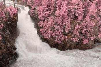 Dorwin Falls - Pink Fantasy HDR
