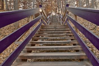 Dorwin Spider Staircase - Funky Retro HD
