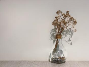 Dried Leaves on Glass Vase Beside Concrete Wall