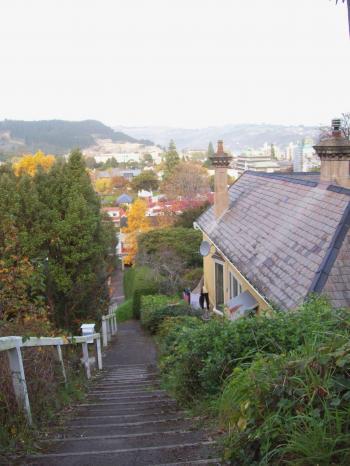 Dunedin steps and landscape