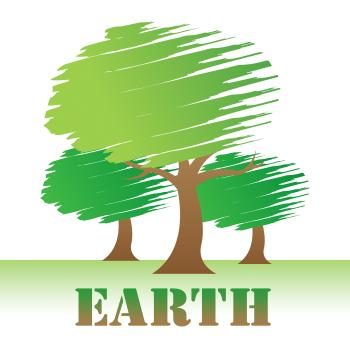 Earth Trees Represents Environment Forest And Nature