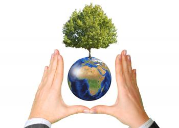 Earth with Tree between Hands - Ecology Concept