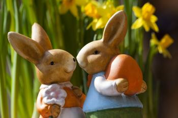 Easter Bunnies and Flowers