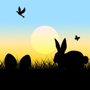 Easter Eggs Indicates Blank Space And Copy