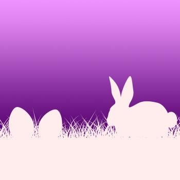 Easter Eggs Represents Blank Space And Copy