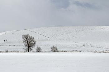 Eastern Oregon ranch in snow