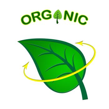 Eco Friendly Represents Organic Products And Conservation